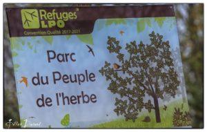 Parc du peuple de l'herbe Photo Gilles Durand