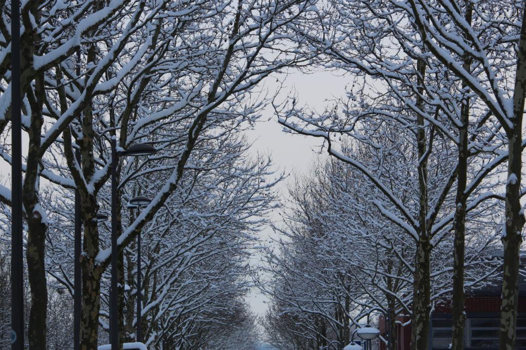 Allee centrale Les Mureaux neige