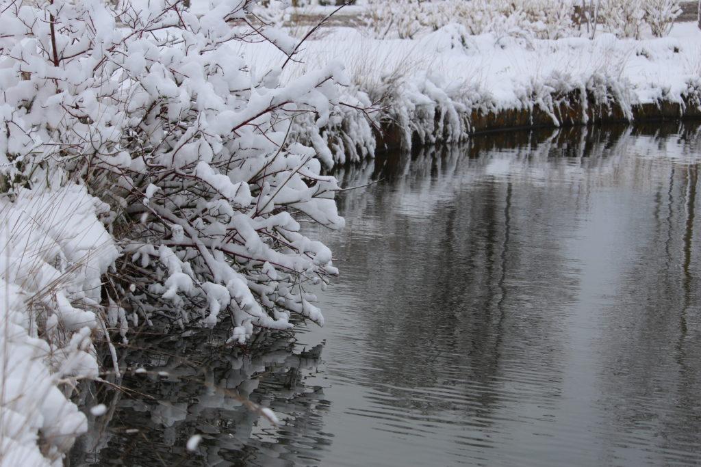Bord de l'eau et neige aux Mureaux