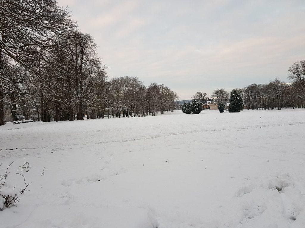 Les Mureaux Parc de Becheville sous la neige