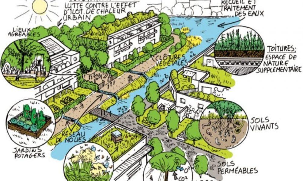 Nature en Ville Les Mureaux