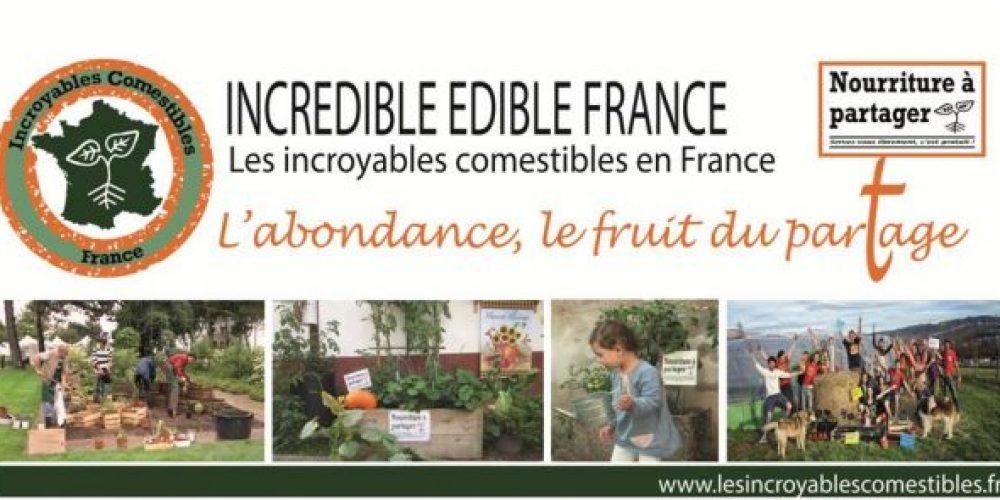 Un groupe 'Incroyables Comestibles' aux Mureaux ?