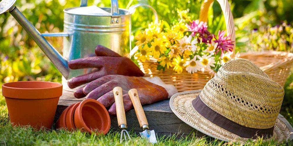 Prêter son jardin et partager les récoltes !