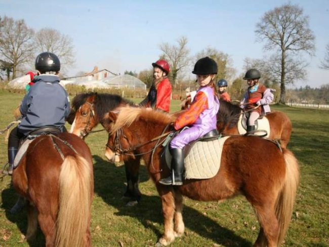 Centre Équestre – Poney Club du Val de Seine 78
