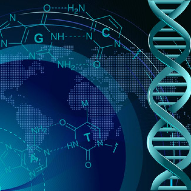 Métiers de la recherche scientifique et accès aux filières d'excellence