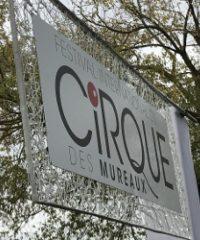 Le Festival international du Cirque des Mureaux [Octobre]