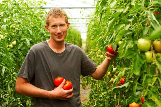 Bio et local : Ferme de la Haye – Les Mureaux