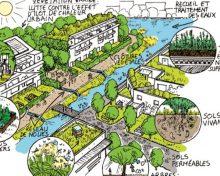 Adapter la ville au changement climatique.